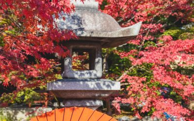 Asian Studies: Online Course Opportunities for High School Students